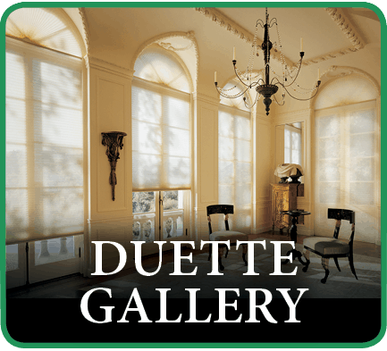 Hunter Douglas Duette Window Treatment Gallery in Southlake, Texas (TX)