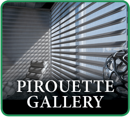 Hunter Douglas Pirouette Window Treatment Gallery in Southlake, Texas (TX)